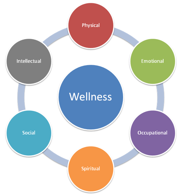 Wellness Wheel - Image credit: Marquette University