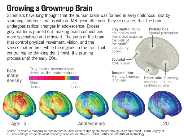 Grown-Up Brain - USNWR - Nick Jacobs, FACHE - HealingHospitals.com