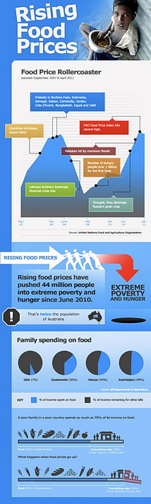 Infographic: The Food Price Rollercoaster